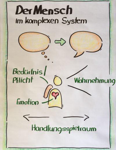 Der Mensch im komplexen System